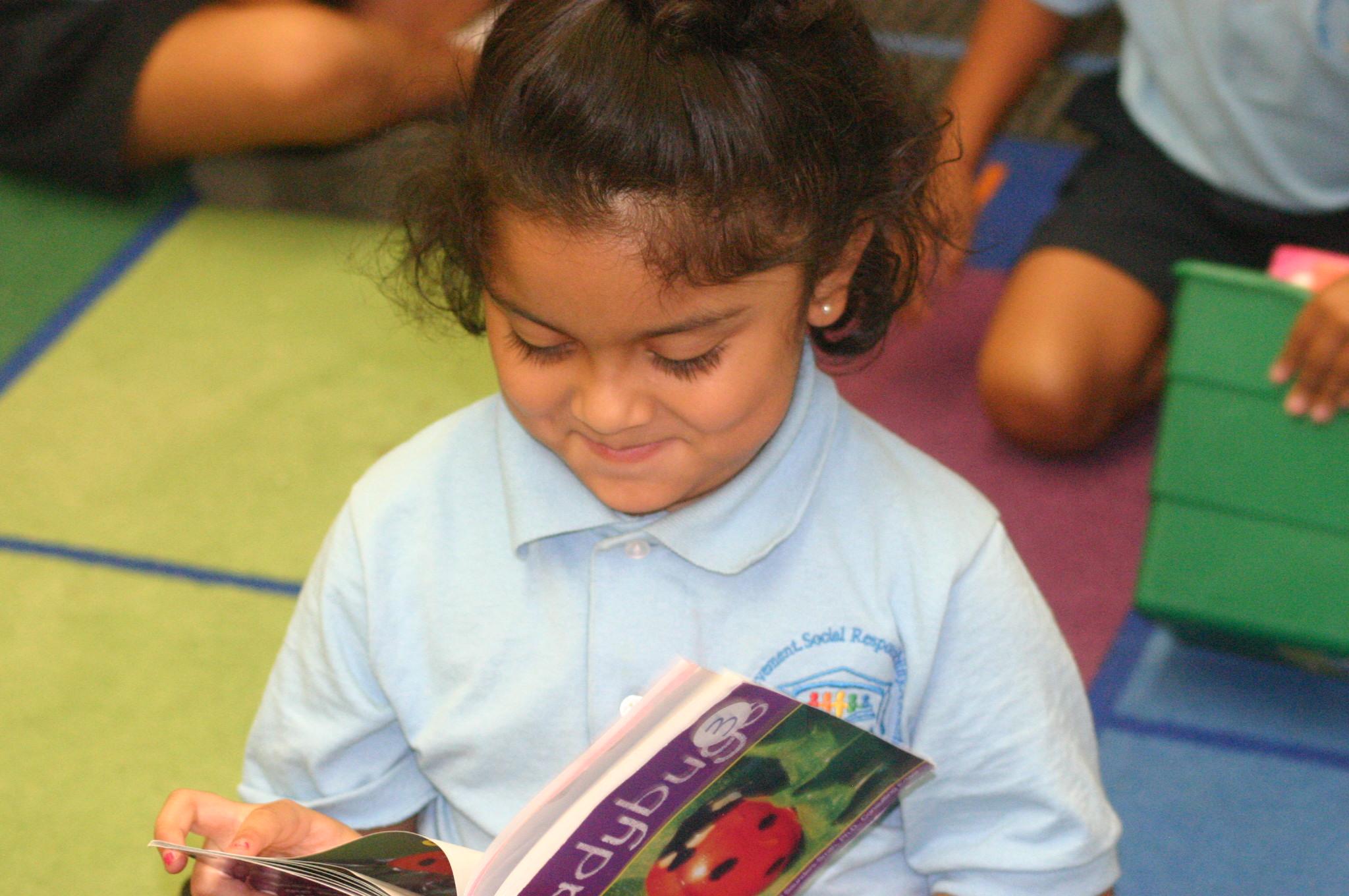 Literacy Header